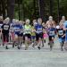 Ny rapport pekar på idrottens samhällskraft