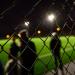 Centrum för idrottsforsknings rapport Statens stöd till idrotten 2020