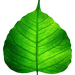 Nomineringen till miljöpriset är öppen
